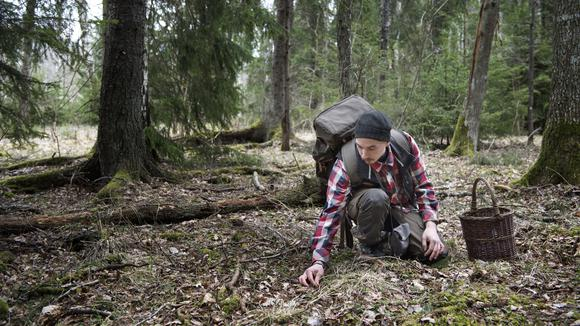 Man i skogen