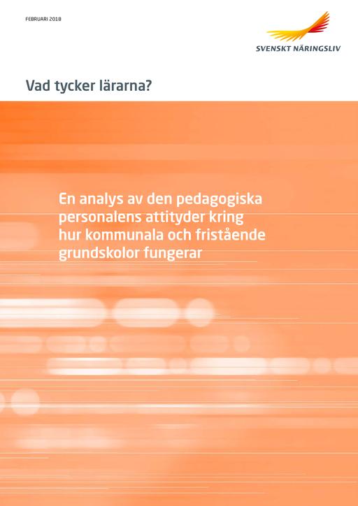 Rapport_Vad_tycker_lararna_webb_180228.pdf.png