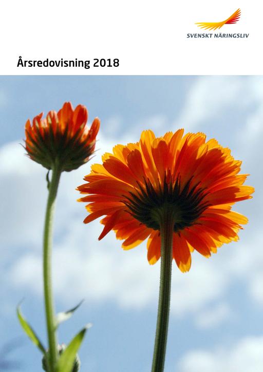 Arsredovisning_2018_webb.pdf.png