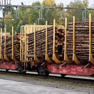 Brist på järnvägar bromskloss för skogsjätte