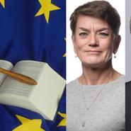 Kritik mot lagförslag om bolagsrätten