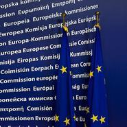 Svenskt Näringslivs synpunkter på EU-kommissionens förslag till reviderade riktlinjer för statligt stöd till klimat, miljöskydd och energi