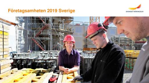 Företagsamheten 2019 Sverige