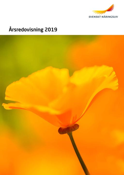 Arsredovisning_2019_Webb.pdf.png