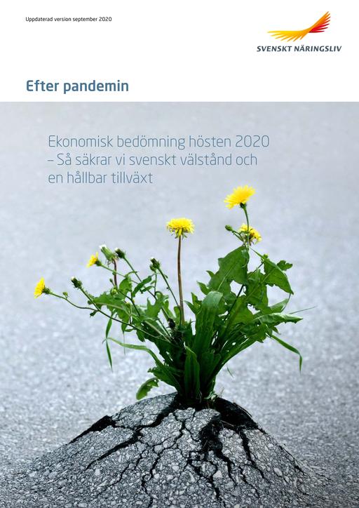 Efter_pandemin_ekonomisk_bedomning_2020_webb.pdf.png
