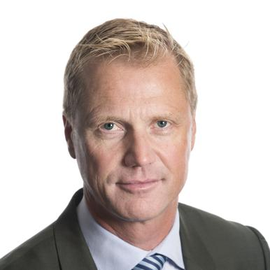 Henrik Sjölund, Holmen AB