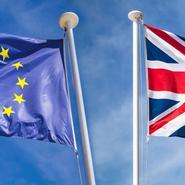 Stor osäkerhet när britterna lämnar EU:s inre marknad