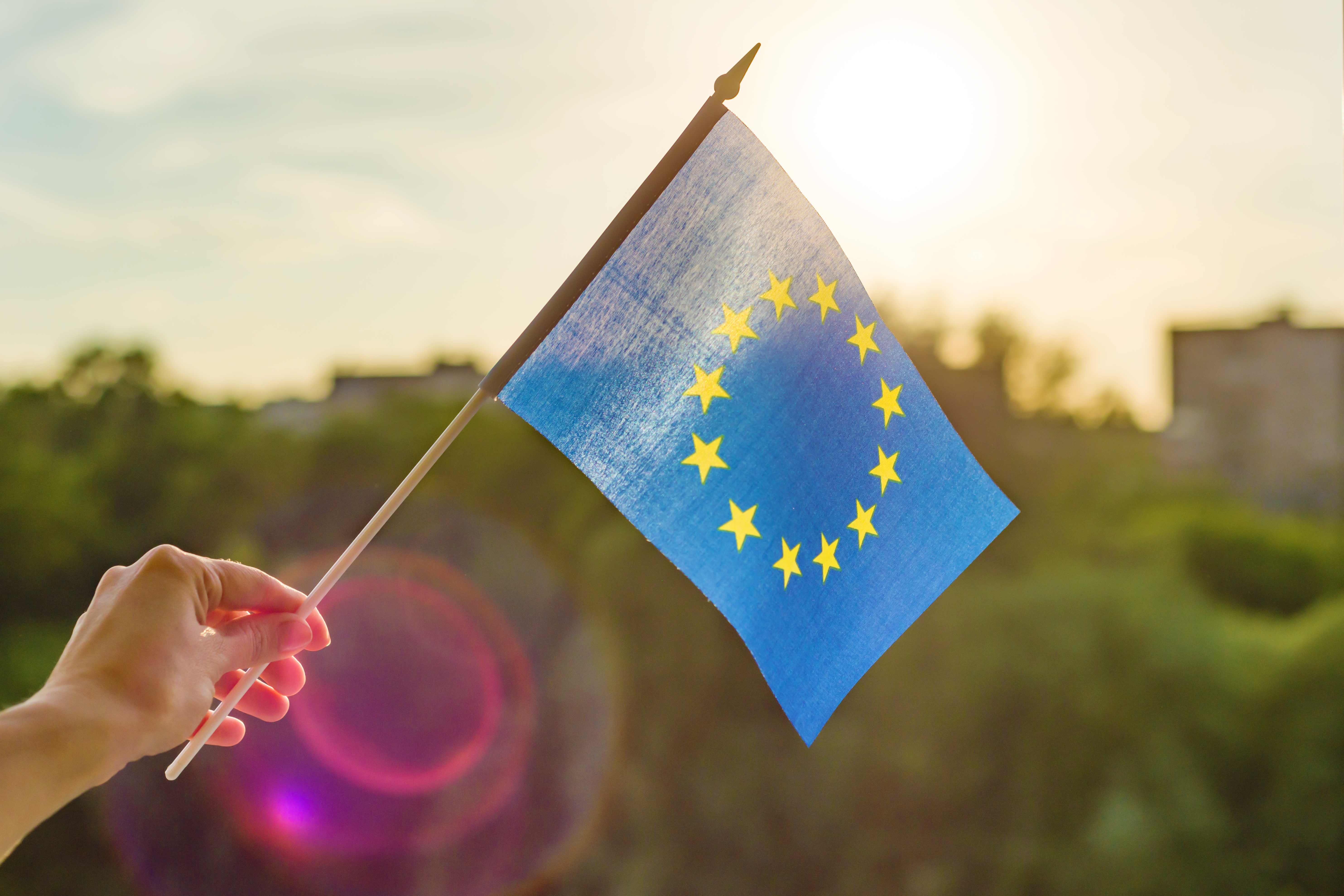 34999489-hand-holds-european-union-flag-in-an-open-window