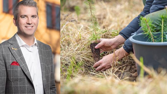 Porträtt på Karl Hultertsröm, Svenskt Näringsliv och bild på plantering av skogsplantor