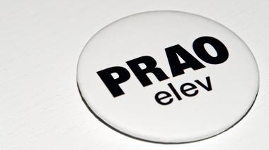 Prao – första mötet med arbetslivet