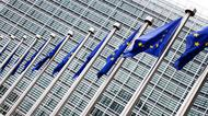 EU parlamentet med flaggor.jpg