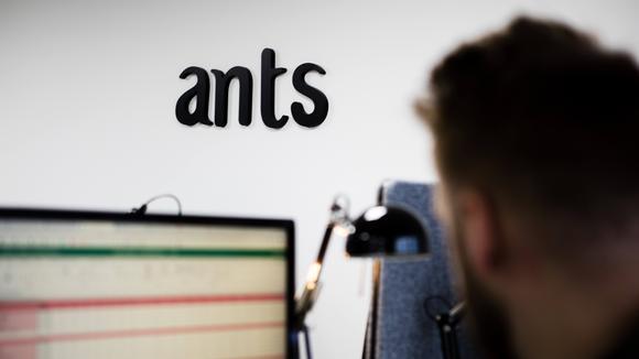 anställd på Ants vid sin dator