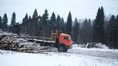 """""""Slår hårdast mot de mindre privata skogsägarna"""""""